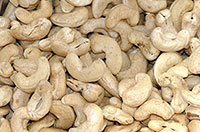 cashews ohne Schale